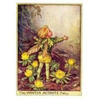 """Carte """"Fées des Fleurs"""" Cicely Mary Barker """"Aconit jaune"""""""
