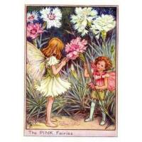 """Carte """"Fées des Fleurs"""" Cicely Mary Barker """"Les oeillets"""""""