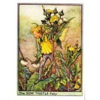 "Carte ""Fées des Fleurs"" Cicely Mary Barker ""Chardon jaune"""