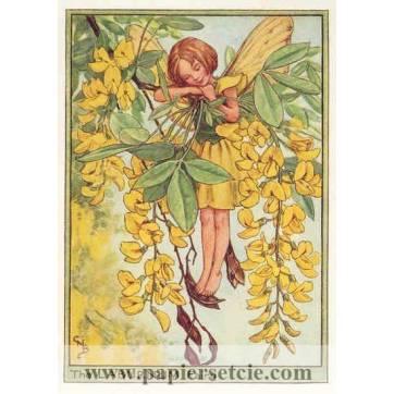 """Carte """"Fées des Fleurs"""" Cicely Mary Barker """"Acaccia"""""""