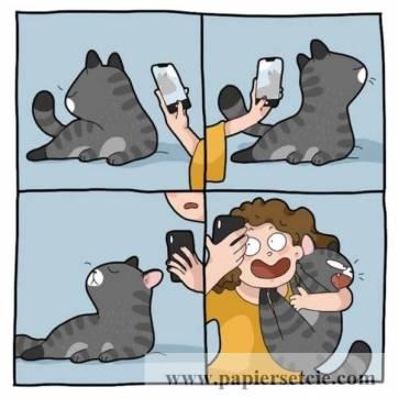 """Carte Chat """"Moi, mon chat et le Selfie"""""""