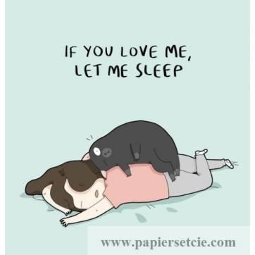 """Carte Chat """"Si tu m'aimes,laisse moi dormir"""""""