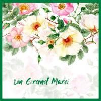 Carte Merci aquarelle Eglantines roses et blanches