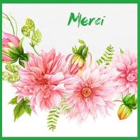 Carte Merci aquarelle  Dahlias roses