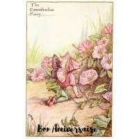 Carte Anniversaire Fées des Fleurs Liserons roses