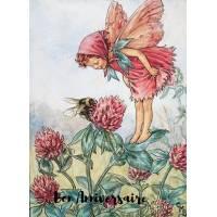 Carte Anniversaire Fées des Fleurs Trèfle rose