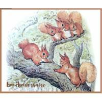 Carte Anniversaire Beatrix Potter Ecureuils