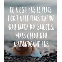 """Carte citation Bonheur:""""Ce n'est pas le plus fort ni le plus rapide qui aura du succès""""..."""