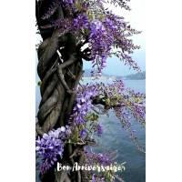 Carte Anniversaire Glycine sur tronc d'arbre
