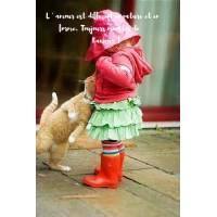 """Carte citation Bonheur: """"L' amour est différent en nature et en forme. Toujours montrer de l'amour !"""""""