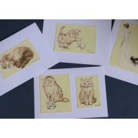 Cartes Chat Chatons Olivier Herford 1 paquet de 4 cartes assorties