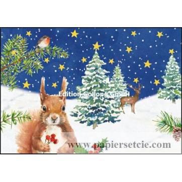 Carte dble Joyeux Noël ou Nouvel an Ecureuil et Houx