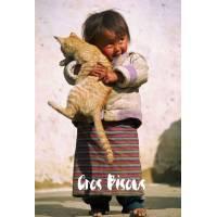 """Carte """"Gros Bisous""""  Adorable Fillette et son Chat"""