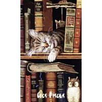 """Carte """"Gros Bisous"""" Chaton endormi parmi les livres"""