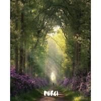 Carte Merci Lumière en Sous Bois