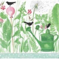 Carte Anniversaire Kerstin Hess Arrosoir et Oiseaux