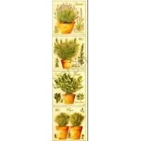 Marque-Pages Herbes de Provence