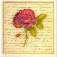 Carte Vincent Jeannerot Cardinal de Richelieu