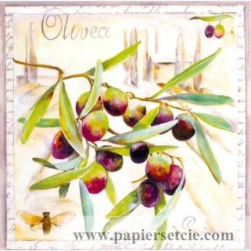 Carte Lizzie Olivea