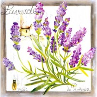 Carte Lizzie Lavande de Provence