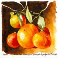 Carte Pascal Cessou Oranges