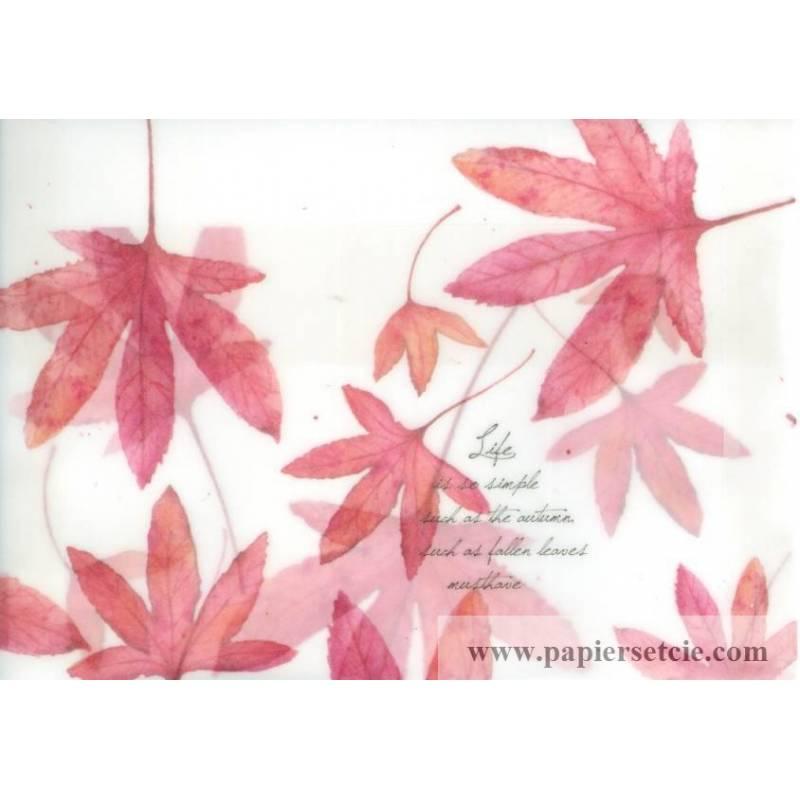 enveloppe cadeau papier calque imprim feuilles rables rouges. Black Bedroom Furniture Sets. Home Design Ideas