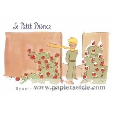 """Carte Le Petit Prince """"Il y a une fleur...je crois qu'elle m'a apprivoisé"""""""