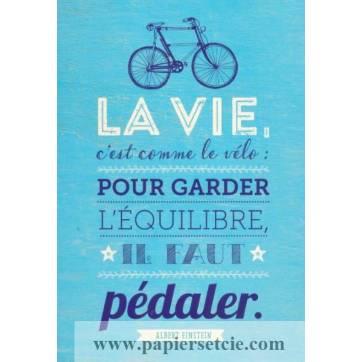 Carte Citation Humour Vintage La Vie C Est Comme Le Velo