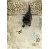 Carte double Chaton et Papillon