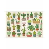 """Carte Lali """"Un hérisson se cache dans les cactus"""""""