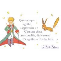 """Carte Citation Le Petit Prince """"Qu'est ce que signifie apprivoiser?"""""""