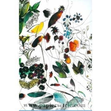 Carte Marion Kerignard Belle Ile Buisson Nature