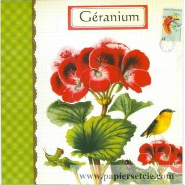 Carte d'art Gwenaëlle Trolez Géranium