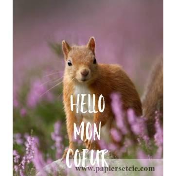 """Carte Humour Ecureuil """"Hello mon Coeur"""""""