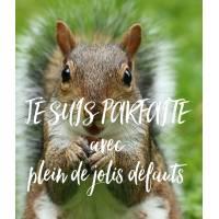 """Carte Humour Ecureuil """"Je suis parfaite, avec de jolis défauts"""""""