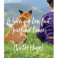 """Citation Bonheur Petit Renard """"Le bien que l'on fait parfume l'âme (Victor Hugo)"""