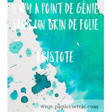 """Carte Citation Humour """"Il n'y a point de génie sans un brin de folie"""" Aristote"""