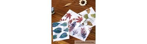 Enveloppes décorées pour carterie